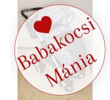 Berry Baby Lux Z-28 babakocsi szürke virágos 10